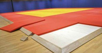 tatami mats for martial arts