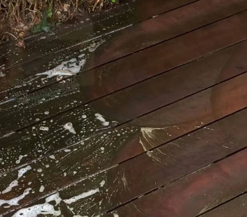 Deck Clean And Stain